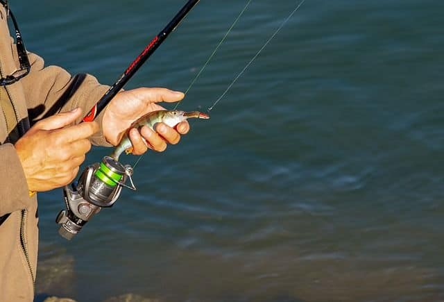 Best Mono Fishing Line in the Market
